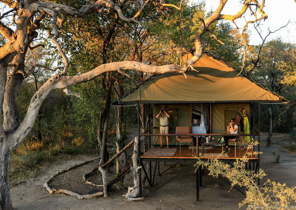 19 - Imvelo Safari Lodges - Bomani Tented Lodge - Exterior view of a Saddlebill Tent.jpg
