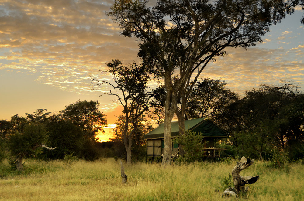 18. Imvelo Safari Lodges - Bomani Tented Lodge - Saddlebill Tent at sunrise.jpg