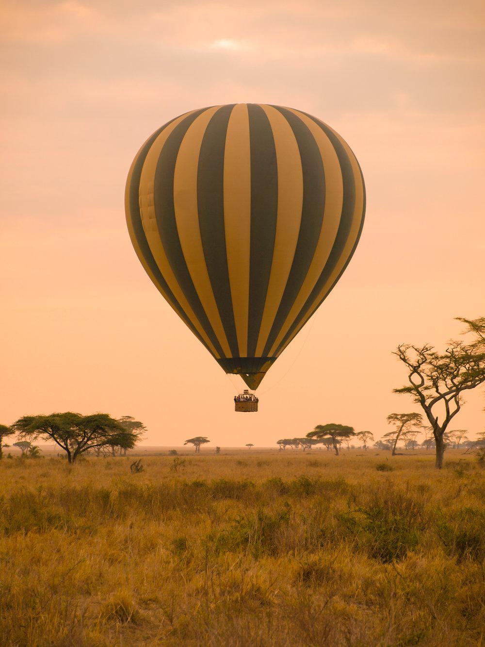 hot air balloon sunrise.jpg