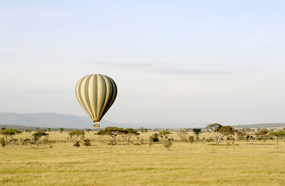 Hot Air balloon panorama serengeti.jpg