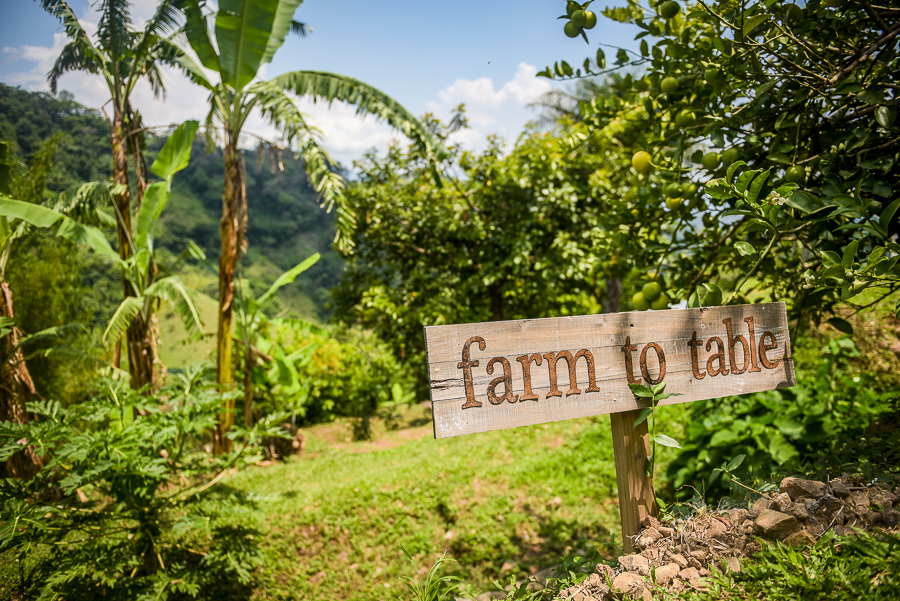 We'll create a beautiful dinner with fresh foods from the local farmer's market and the onsite garden.   Meals: B   L   D