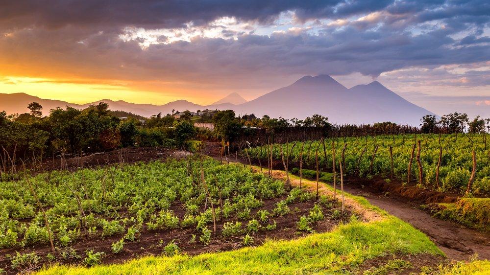 Guatemala Glamping -