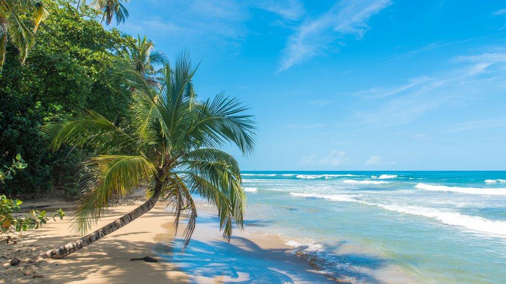 Costa Rica Surf Adventure -