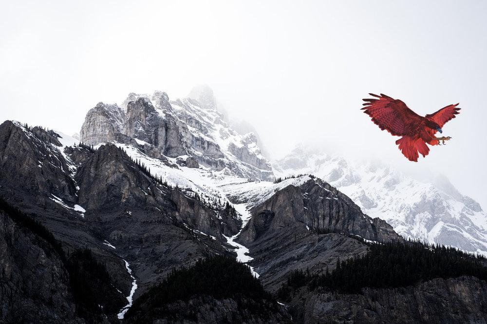 mountain-snow-mountain-range-summit-481442.jpeg