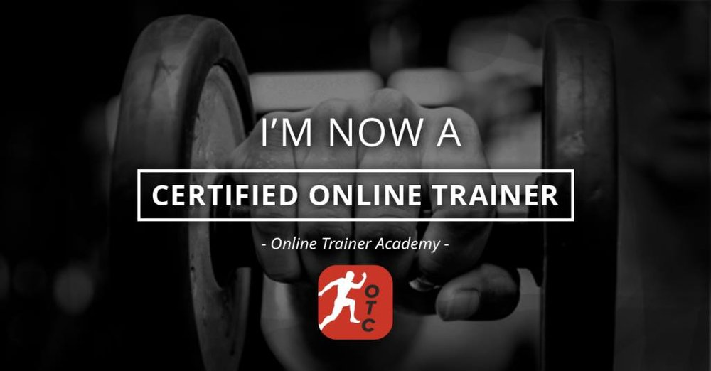 The Online Trainer Academy Review How To Become A Certified Online