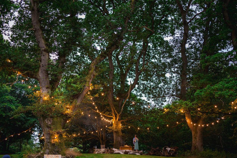 finnebrogue-woods-wedding-venue