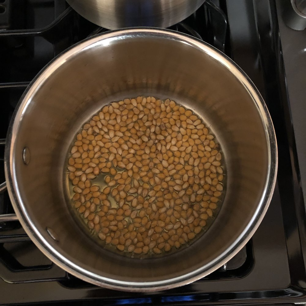 Fill the bottom of the pot with a single layer of popcorn kernels.