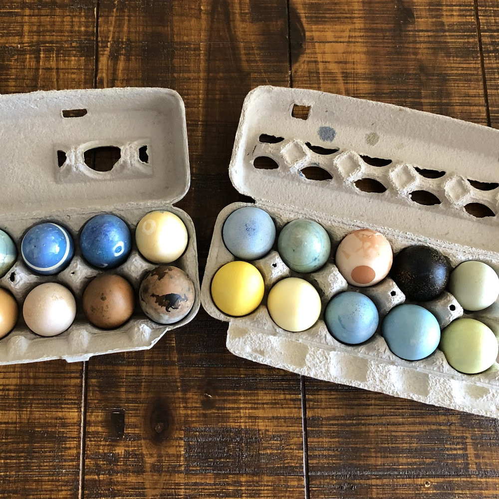 SAVE EGG CARTONS