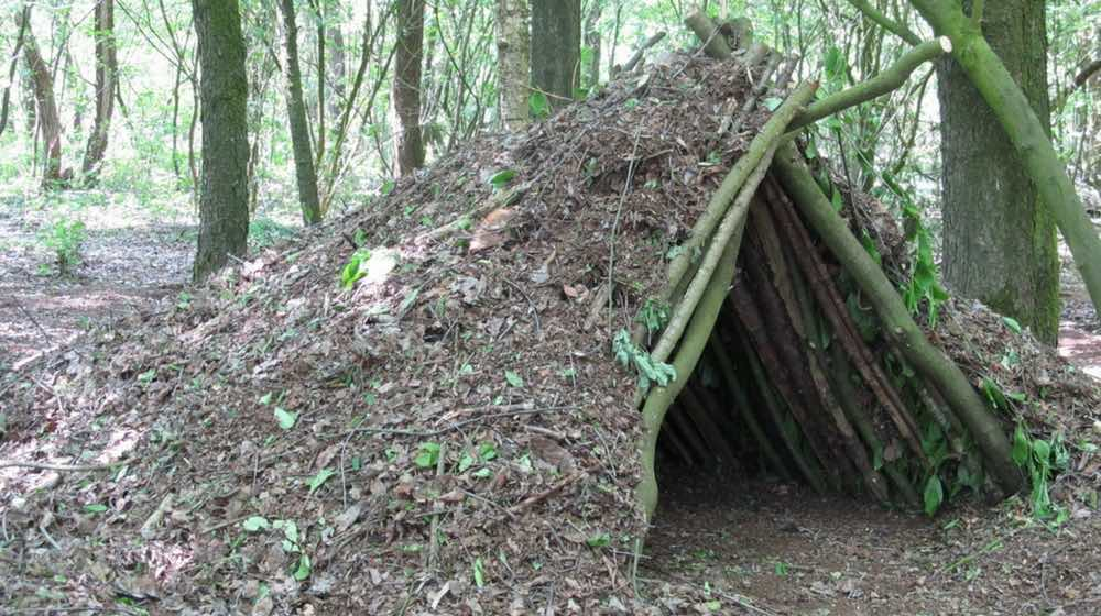 survival-shelters-ft-image.jpg