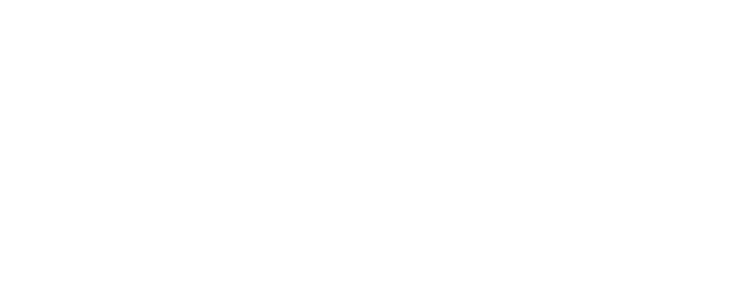 Tierney Global Travel