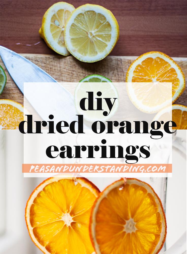 diy dried orange earrings.jpg