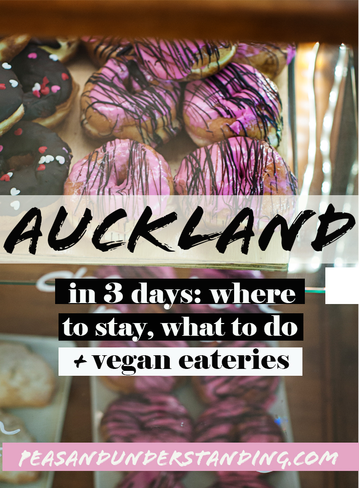 auckland itinerary 3 days_1.jpg