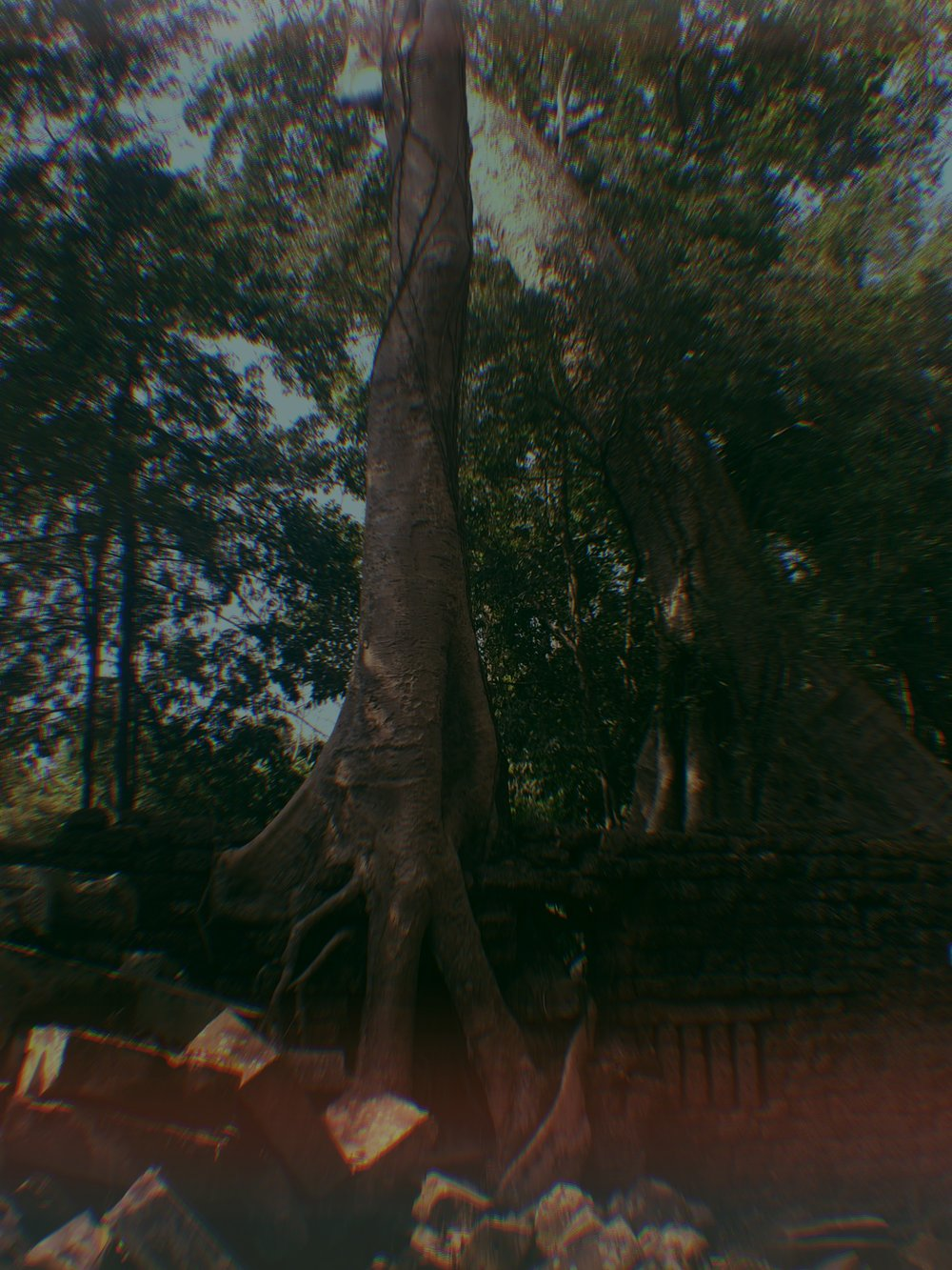 Visiting the temples of Angkor
