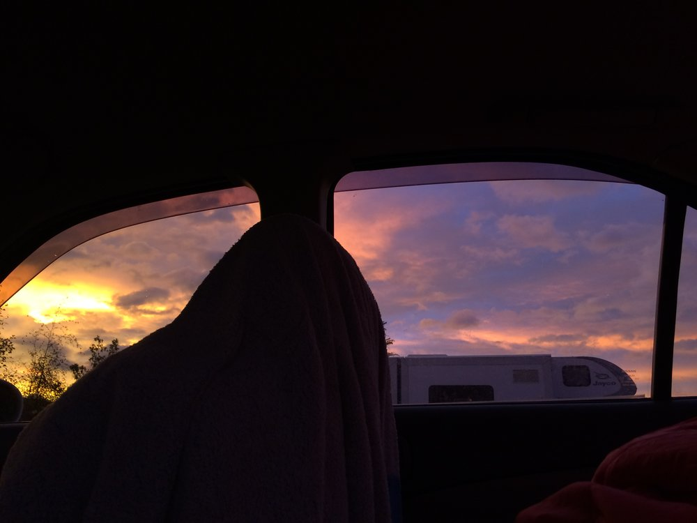 Sleeping in the backseat of my car, wanaka.