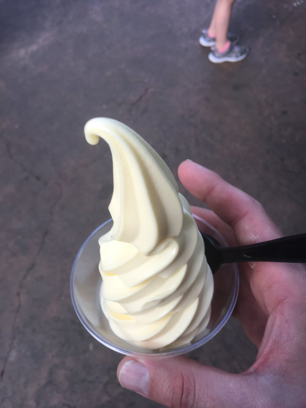"The Dole Whip in Adventureland.  I'm sure there is something more I could say about this other than ""if you don't get one you wasted your whole trip,"" but I can't.  There is not a better way to beat the heat than with it's pineapple and creamy goodness.  It's non-dairy, so if you are not lucky enough to be one of us who is lactose-tolerant, you can enjoy it with ease.  I first enjoyed one on a trip as an adult to Magic Kingdom at my younger brother's behest.  So I inextricably connect it to spending time with family that I don't see as much as I want to or should."