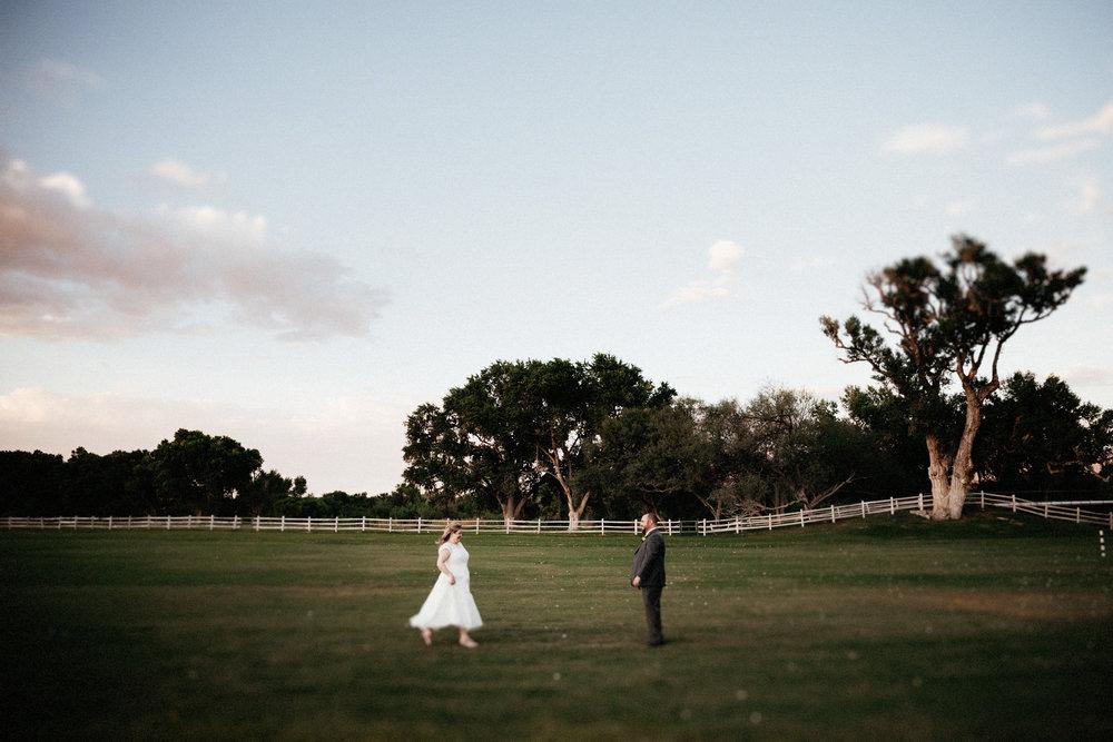 Lindsay and David Wedding