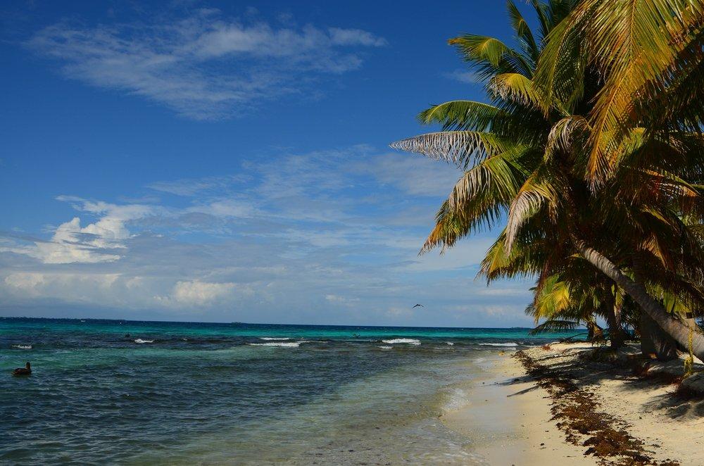 Belize shore