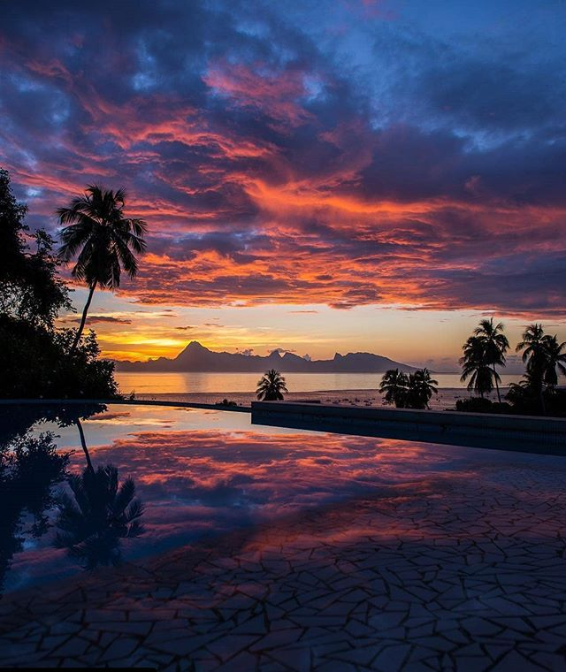 Paradise isn't a place...it's a feeling. But this place comes pretty f'ing close. . . . . Repost 📸 @kirvanb check out his badass gallery . . . . . #frenchpolynesia #tahiti #sunsetdreams #sunset_madness #skyporn #sunsetview #polynesian #paradise🌴 #islandlife #travelfreedom #travelmotivation #instadaily #discoveryearth #landscape_hunter #travelpassion #passportready #wanderlove #bucketlist✔️ #sunset_pics #sunsetlovers #islandvibes #travelbucketlist #sunset_love #palmtrees #escapeandexplore #travelblogger #travelmode #nature_wizards #places_wow