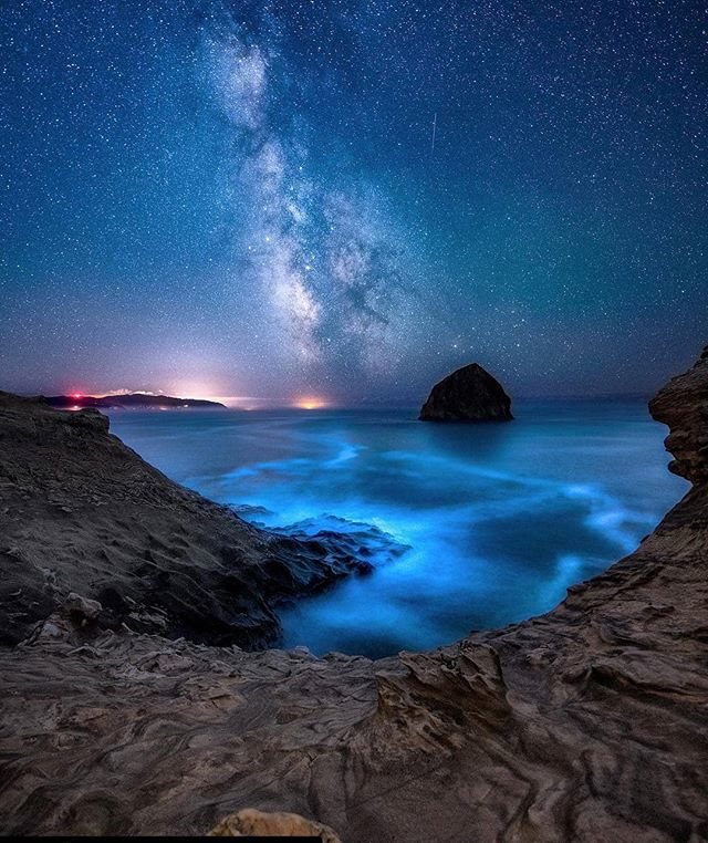 Wow I had no idea there was bioluminescent waters in Oregon. Incredible. . Definitely making it a goal to visit sometime. . . 📸 Repost @whereisweatherby ・・・ . . Shot: Bioluminescent algae off the coast of Oregon, in Pacific City. . . . . . . #pacificcoast #pacificocean #oregon #oregoncoast #oregonexplored #oregonhikes #photooftheday #landscapelover #landscape_hunter #landscape_specialist #travelfreedom #travelmode #nightphotography #nightskyphotography #milkywaychasers #photographylovers💕💕 #travelbetter #landscape_captures #seascapephotography #travelpassion #traveloregon #discoveramerica #bioluminescence