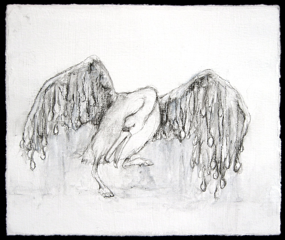 Spoon-feathered swan,  2006, charcoal on paper, 6 x 7 in.