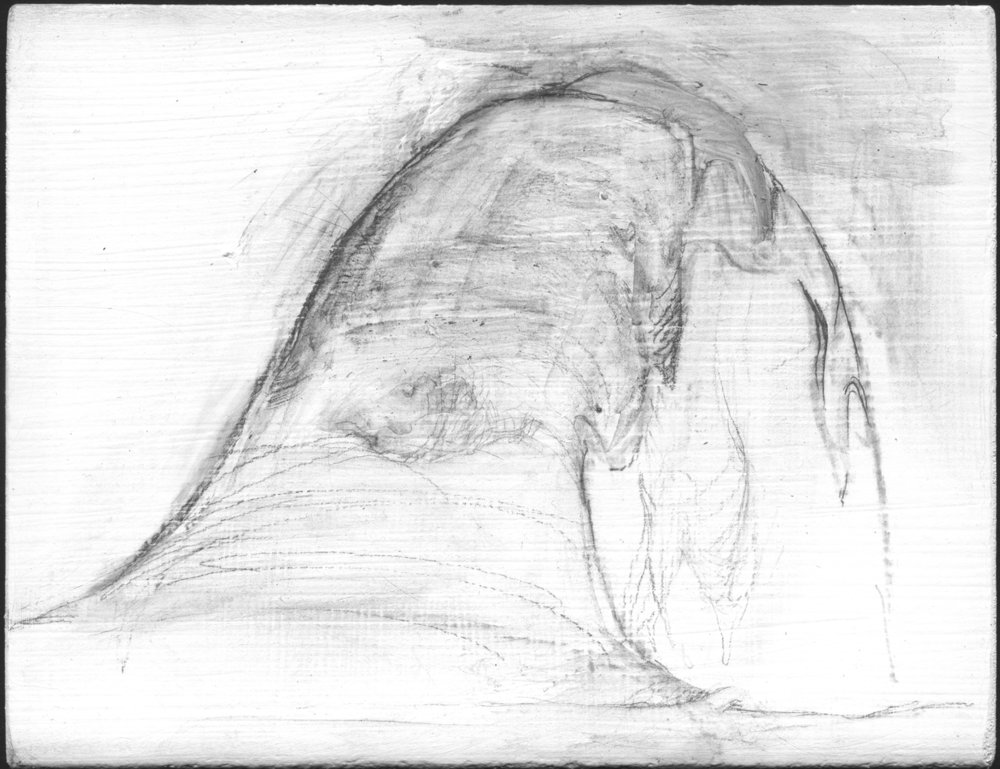 Covered with ice and snow   , 2008,   graphite on gessoed panel, 3 3/4 x 4 3/4 in.
