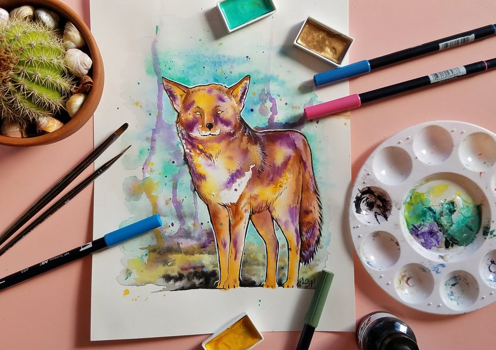 Coyote watercolor and ink illustration by Making Something Rad
