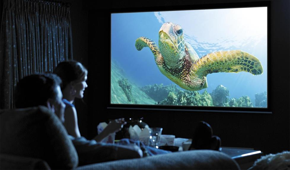 MovieNight-HomeTheaterProjector.jpg