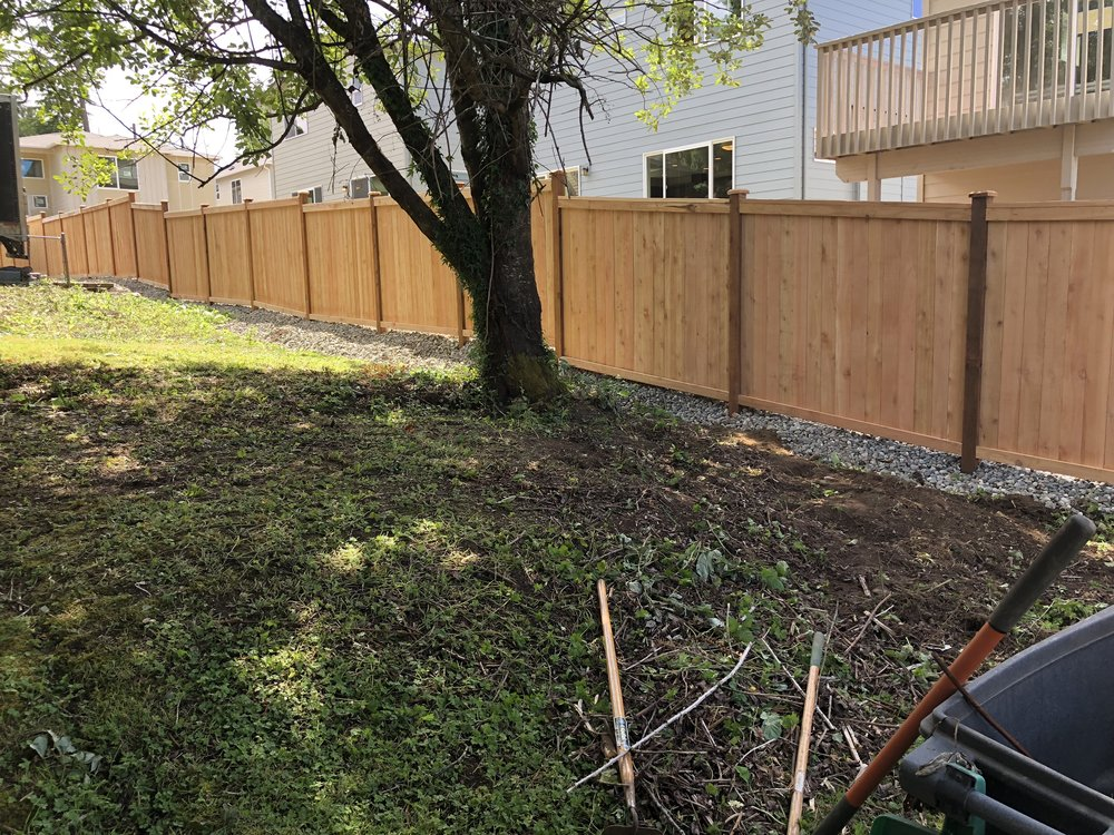 "I don't really have a ""before"" picture, or one I can easily find, so there's not much to see. Which is sort of the point. The whole fence line was a mess o' bushes and brambles. I feel pretty good about this."