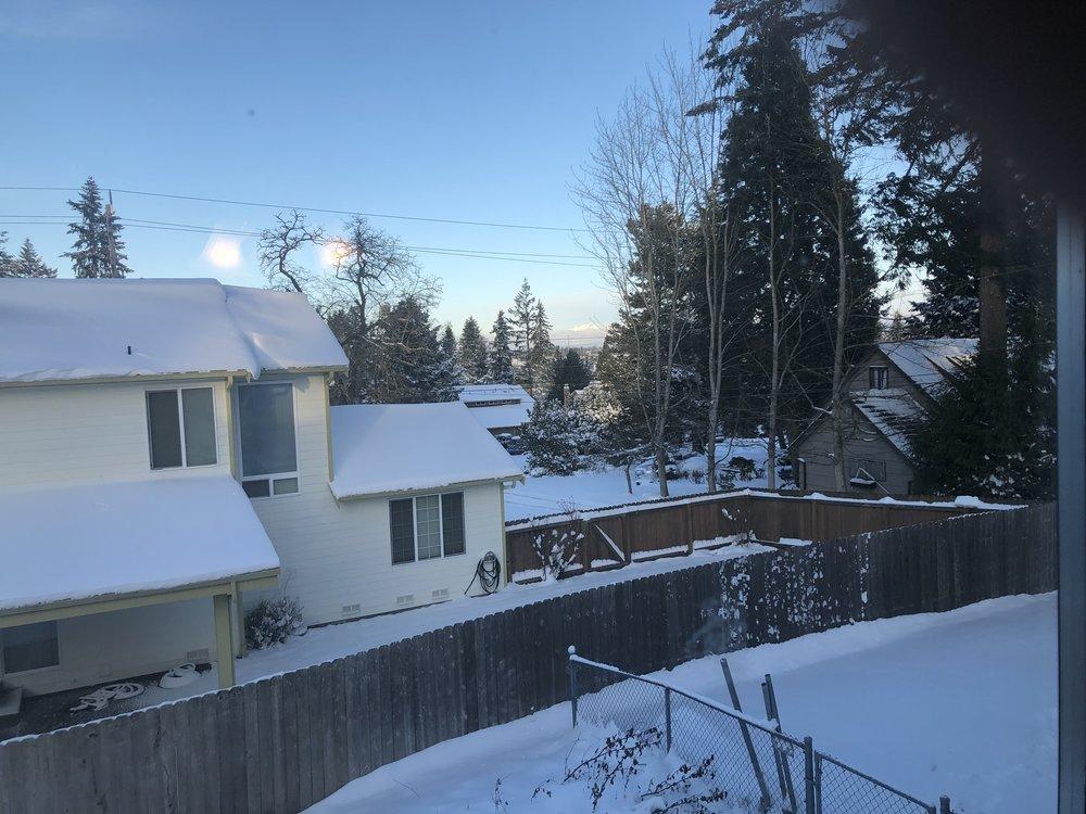 Out bedroom window, looking northeast