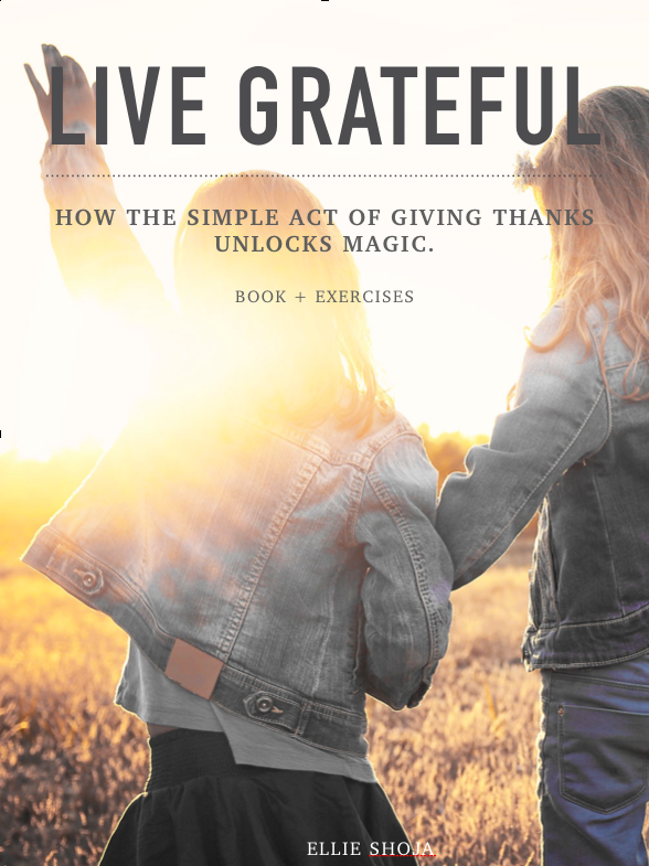 Discover the power of gratitude and learn essential tools and exercises with this powerful e-book.