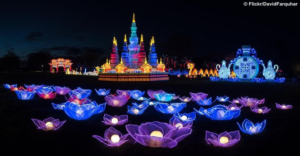The Festival of Light at Longleat Safari Park Photo Credit: Flickr/David Farquhar