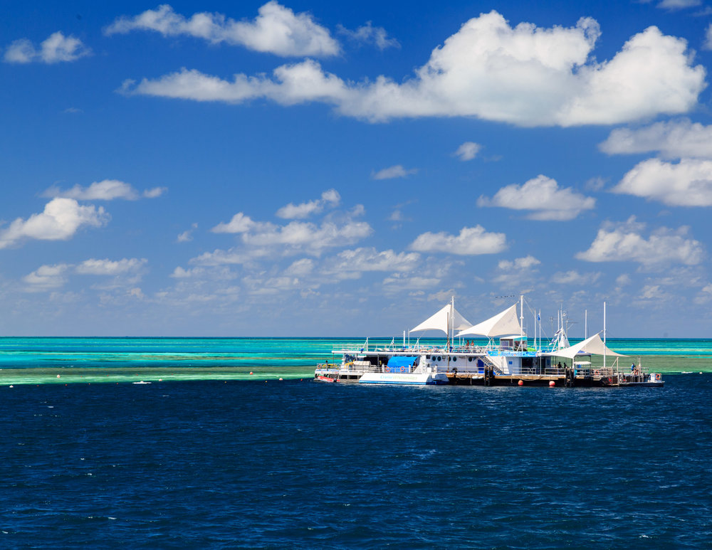 Just look at those blues! The amazing Hardy reef.