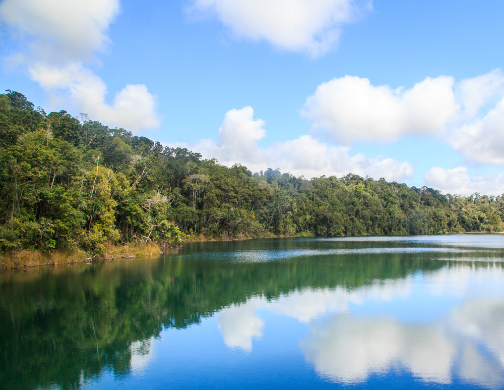 Unmissable day trips from Cairns: Lake Eacham
