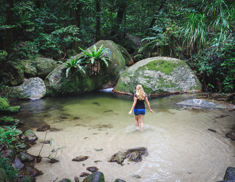 Unmissable day trips from Cairns: Mossman Gorge