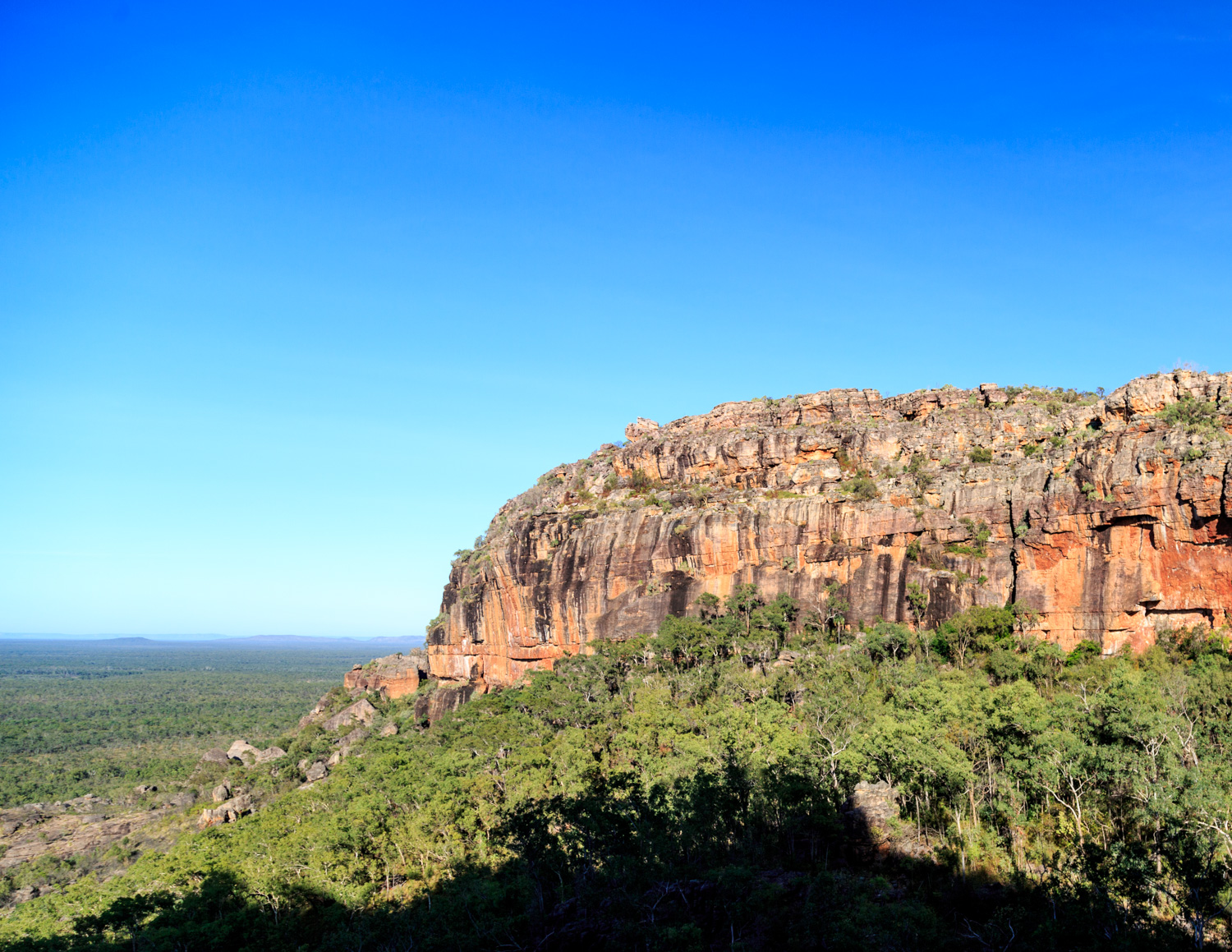 The best things to do in Kakadu: Barrk Walk
