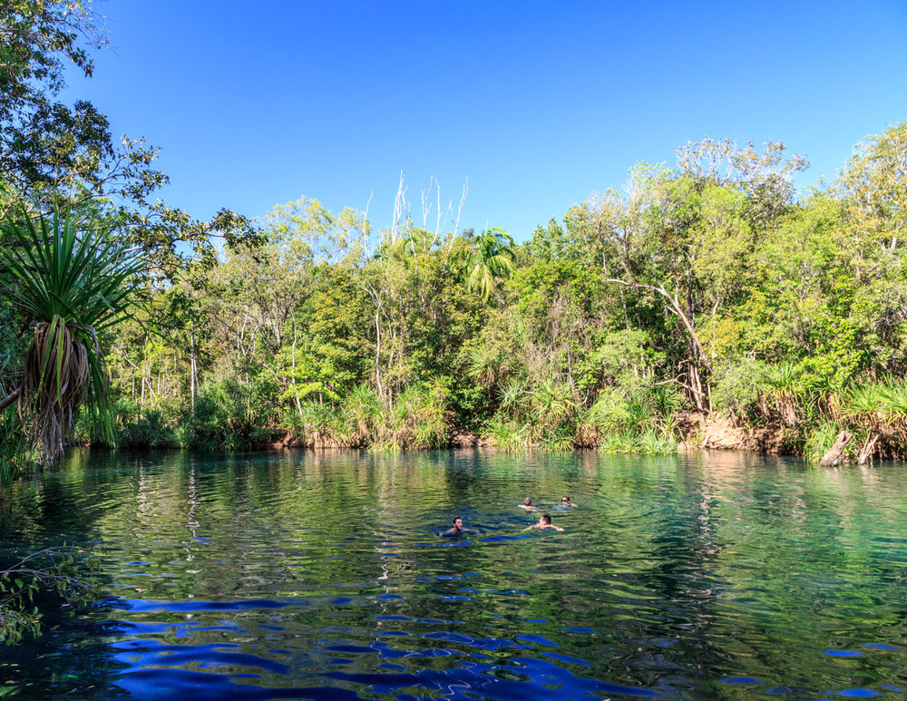 Best things to do near Darwin: Berry Springs