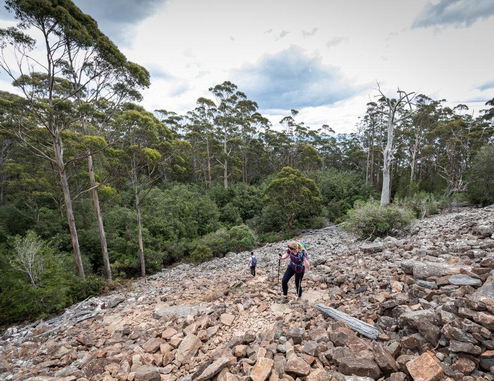 Hiking Bishop & Clerk: Rocky Scree on Bishop and Clerk