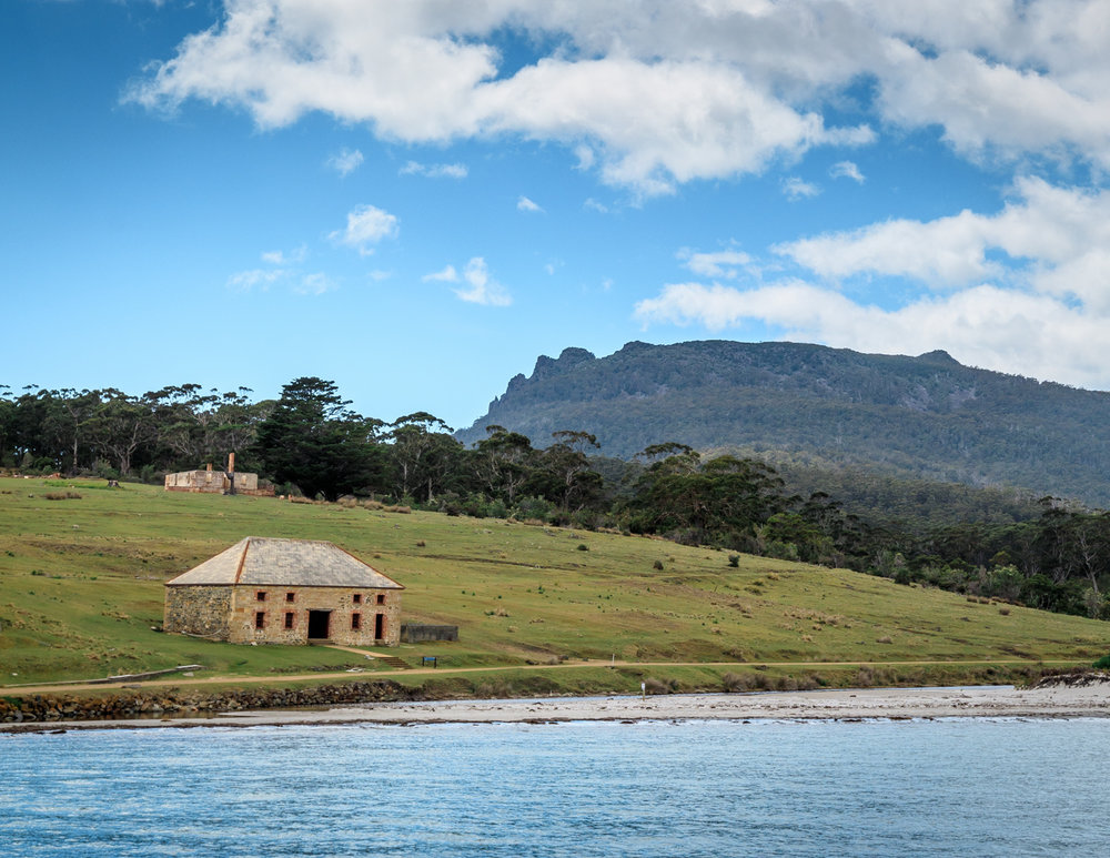 The best things to do in Tasmania: Maria Island, Tasmania