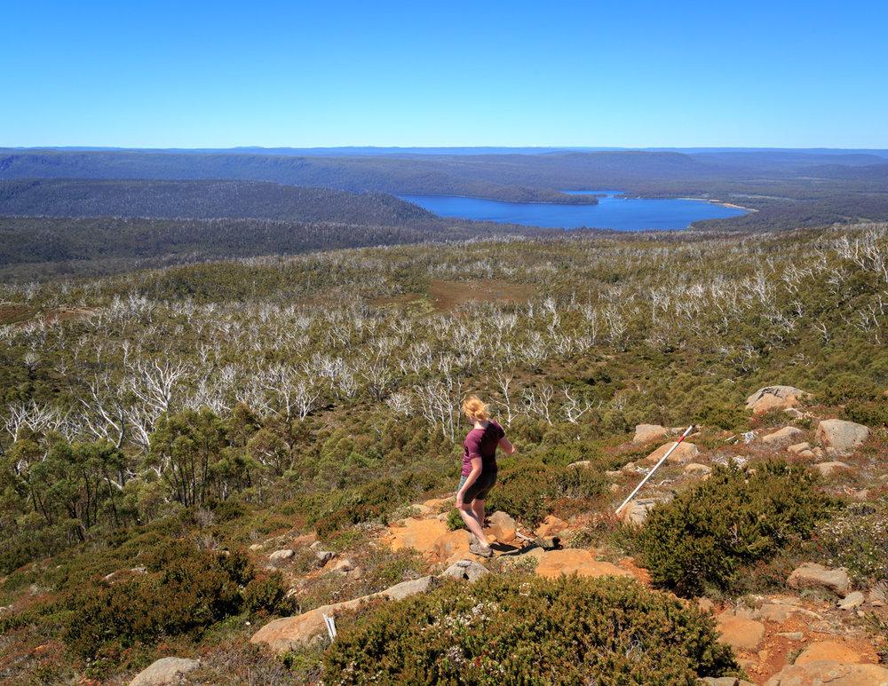 Mount Rufus Hike, Tasmania