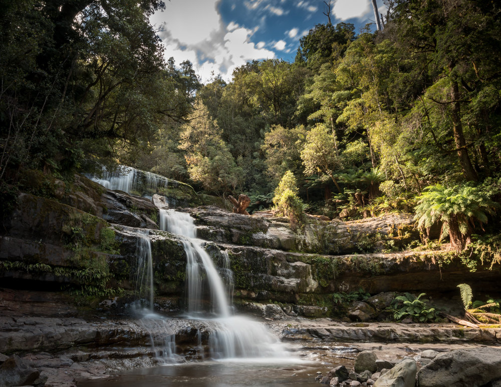 Best things to do in Tasmania: Liffey Falls, Tasmania