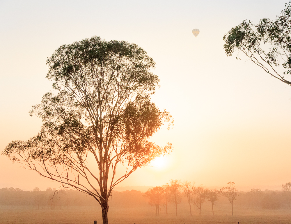 Hunter Valley, Best things to do in New South Wales