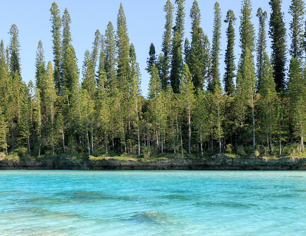 Best things to do in New Caledonia, Piscine Naturelle