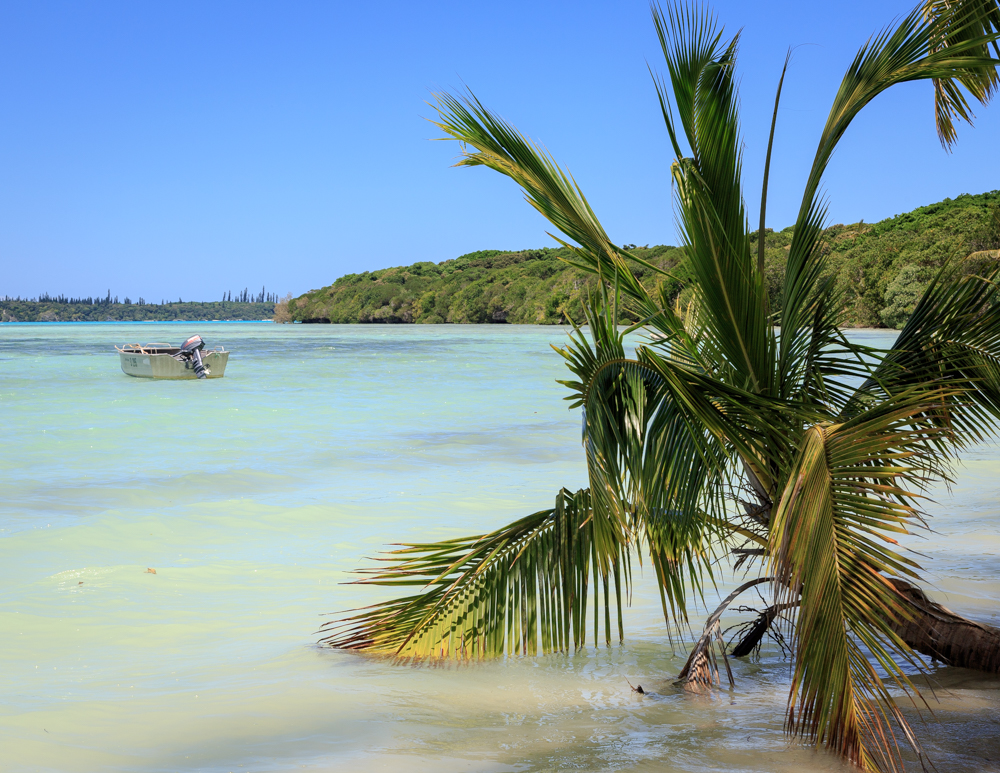 Top 10 things to do in New Caledonia, Pirogue
