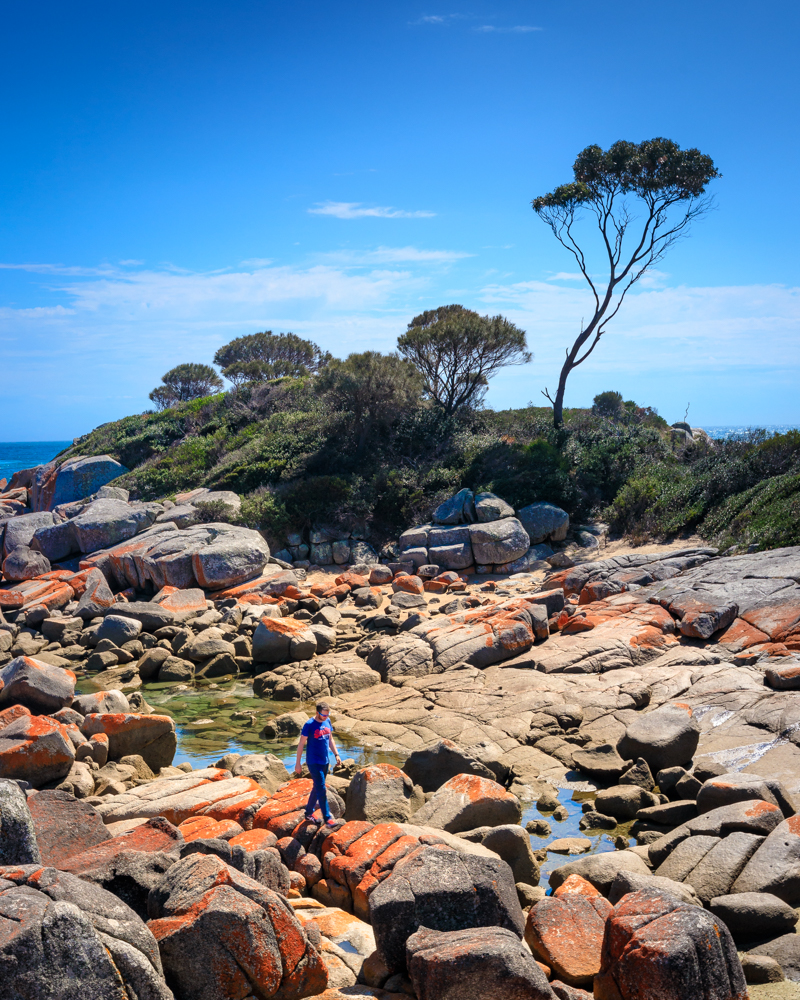 Most Instagrammble spots in Tasmania, Bay of Fires