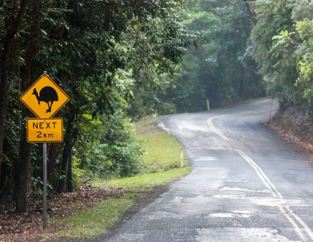 Daintree, Queensland