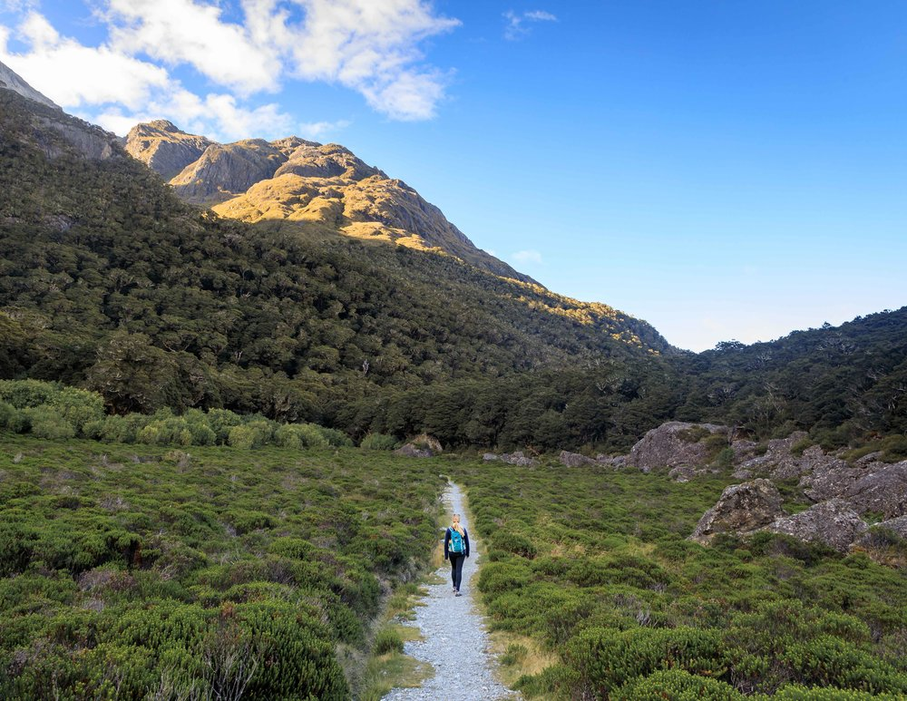 The Routeburn Track