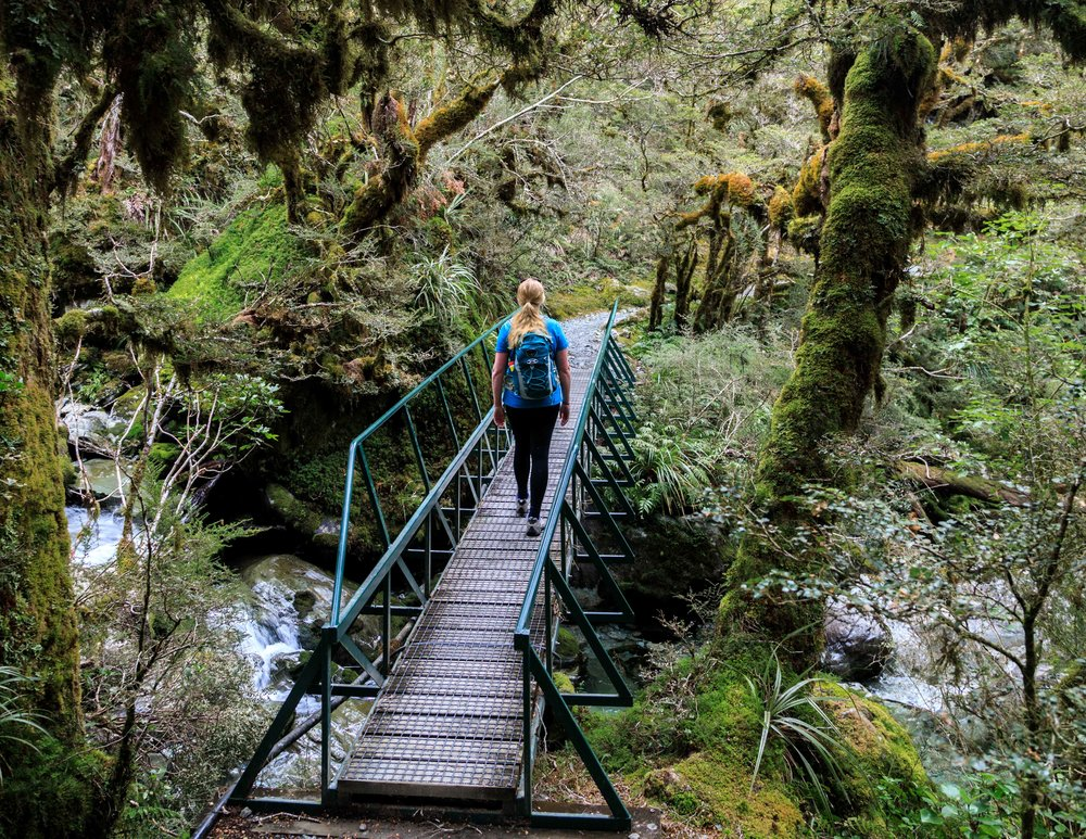 The Routeburn Track: The bridge before Howden Hut