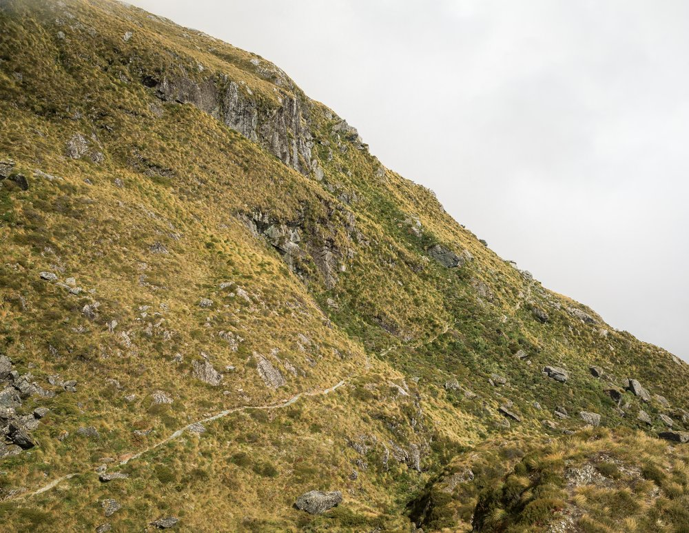 The Routeburn Track: Harris Saddle to Lake MacKenzie