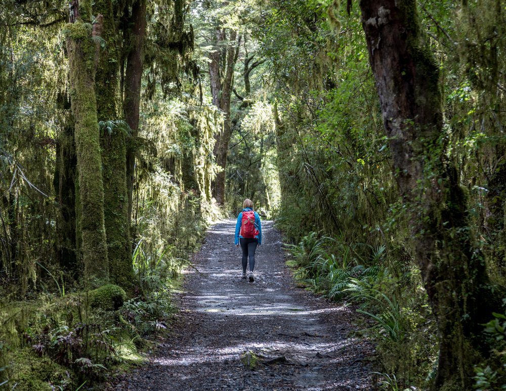 The Milford Track: the start