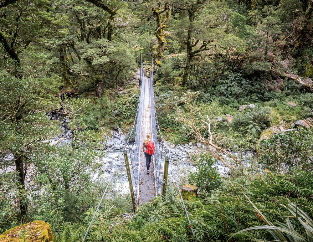 The bridge over Roaring Burn, The Milford Track